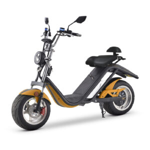 CityCoco E-Thor moto electrica ciclomotor bateria NQi UQi  MQi  MQi+ pusa puma niu ecomobility green world nuuk silence